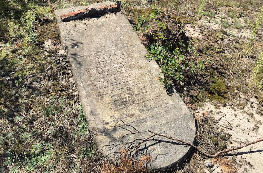 The+Jewish+cemetery+in+Otwock%2C+Poland.+%28Noah+Lederman%29
