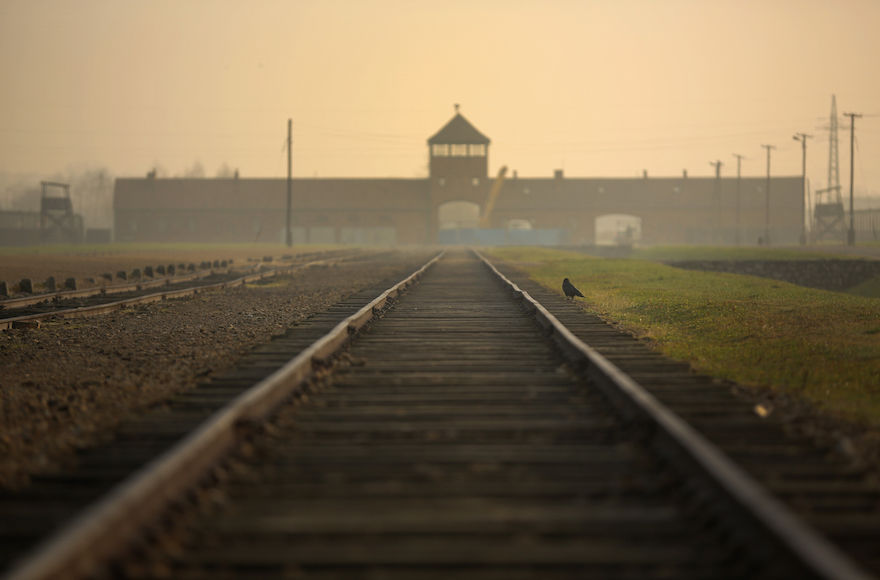 The+railway+track+leading+to+the+infamous+%E2%80%9Cdeath+gate%E2%80%9D+at+the+Auschwitz+II+Birkenau+extermination+camp+in+Oswiecim%2C+Poland%2C+Nov.+13%2C+2014.+%28Christopher+Furlong%2FGetty+Images%29