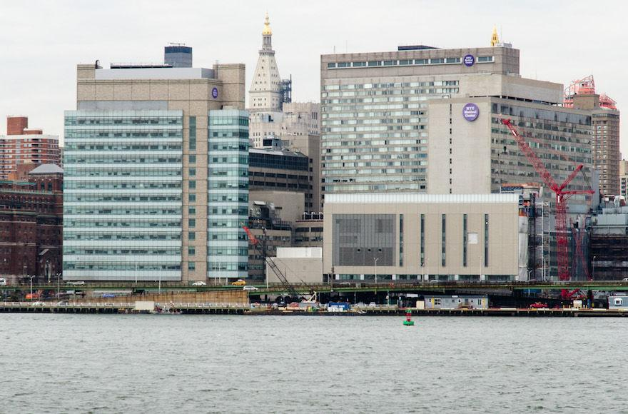 A+view+of+the+NYU+Medical+Center+on+First+Avenue+in+New+York+City+in+2014.+%28Kenneth+Wilsey%2FWikimedia+Commons%29