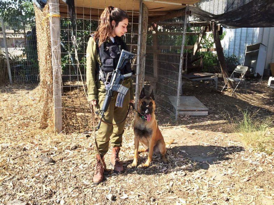 Israel+Defense+Forces+Sgt.+Talia+Wolkowitz+and+Hunter%2C+the+Belgian+shepherd+she+worked+with+during+her+IDF%C2%A0service.