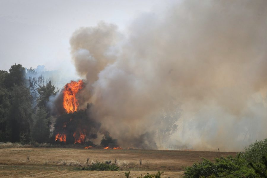 A fire rages in the Ben Shemen Forest in central Israel on May 23, 2019. Massive fires blazed throughout the country, which is blanketed in a heat wave. Photo: Flash90