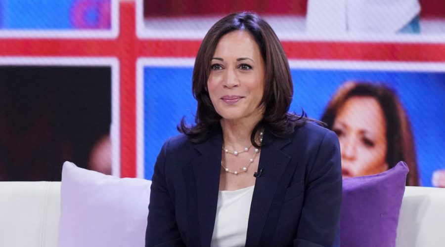 Kamala Harris failed to gain steam among the crowded field of Democratic contenders after a promising start. (Alexander Tamargo/Getty Images)