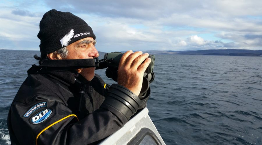 Amos Nachoum searches for polar bears in the Canadian Arctic. (Scene from