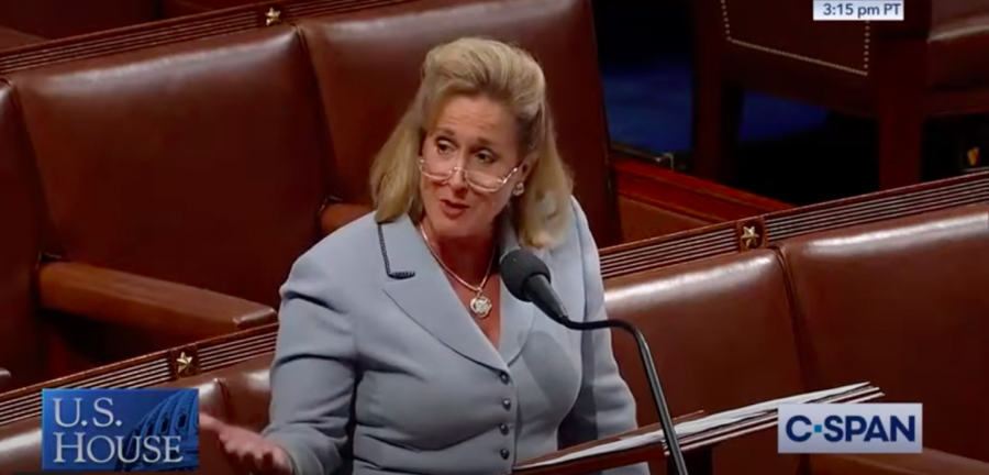 Rep. Ann Wagner, R- Ballwin, delivered a speech about Israel in 2019 at the U.S. House. Screenshot