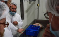 An EU ruling on kosher slaughter tells rabbis how to go about their business
