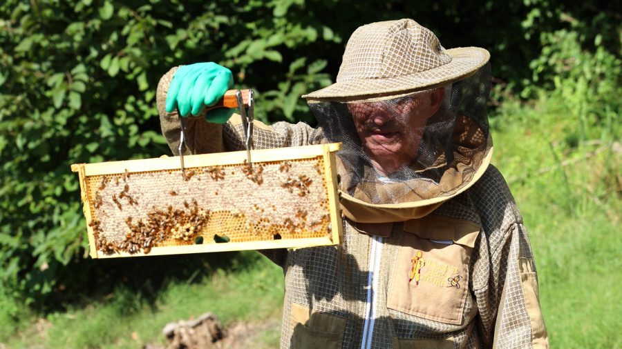 Beekeeper Lonnie Grosman. Photo: Bill Motchan