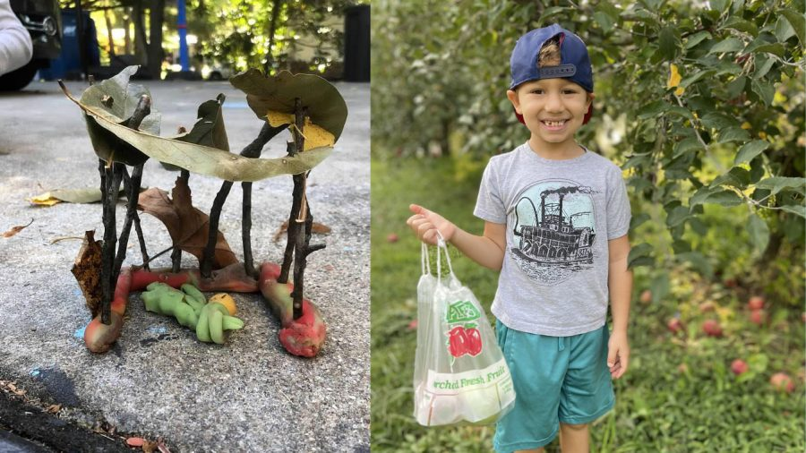 Apple picking and sukkot building ideas for the whole family to enjoy
