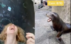 Remembering when Mallory Palmer went viral combining sea lions with the blasts of the shofar