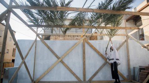 9 ways to celebrate an eco-friendly Sukkot