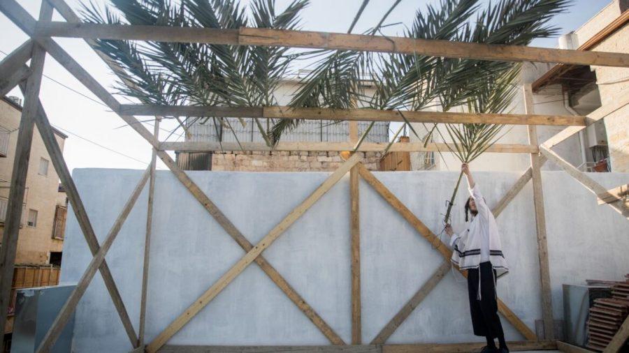 9+ways+to+celebrate+an+eco-friendly+Sukkot